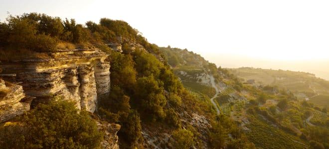 Wines of Cyprus