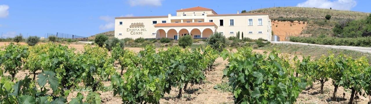 Viñedos y Bodega Ermita del Conde