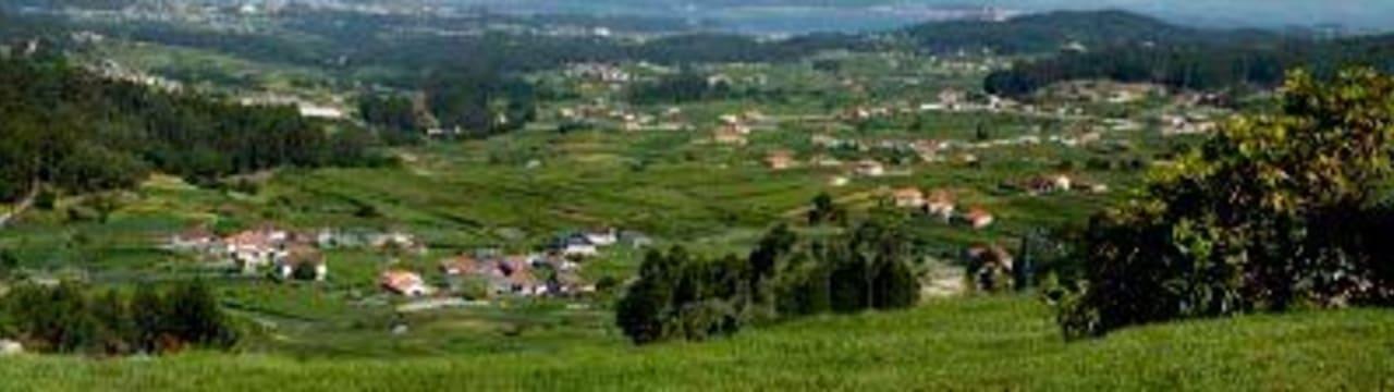 Bodegas Vionta