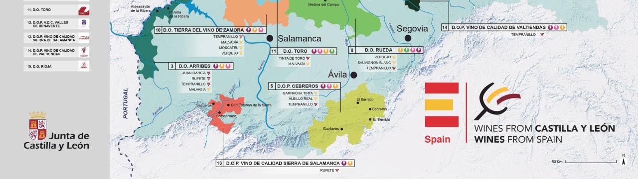 Region of Castilla y León (Spain)