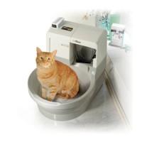 Luxury cat toilet