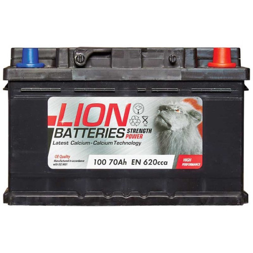 100 Lion Battery