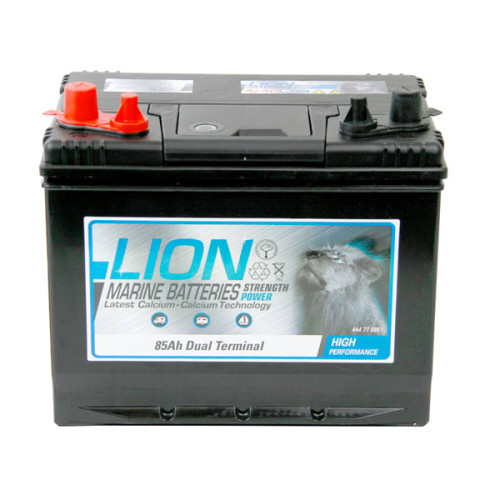 90 AH Lion Marine Battery