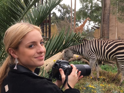 Wildlife Photography Course  |  Melbourne zoo | Focus 10 | 4hrs