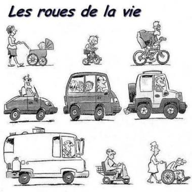 Image drole  Les roues de la vie