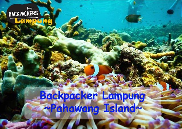 Backpacker Lampung – Paket Murah Trip Pulau Pahawang Lampung