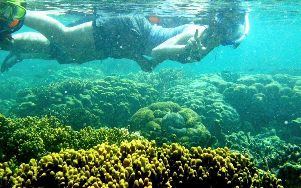 snorkeling-pahawang-2