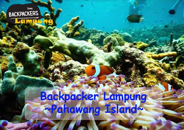Backpacker Lampung – Open Trip Pahawang Lampung 2D1N