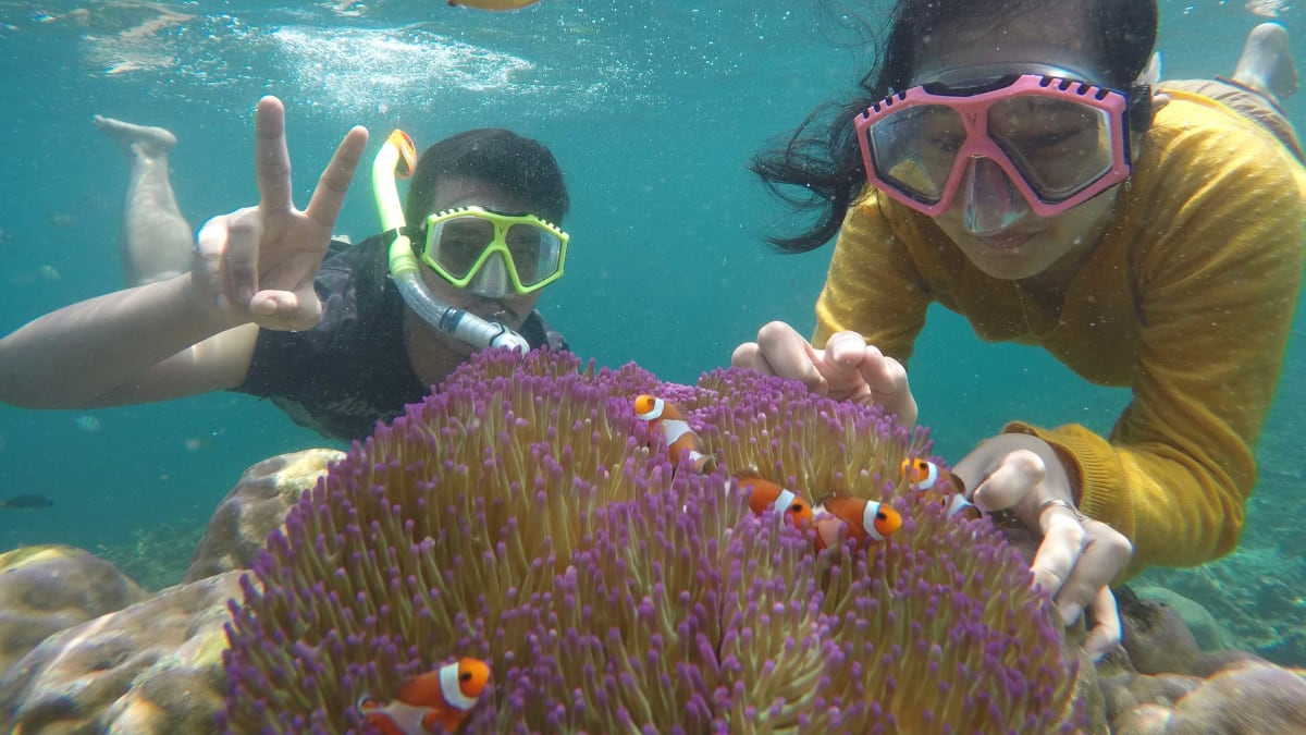 Backpacker lampung :: Private Trip Pahawang Island Lampung From Jakarta