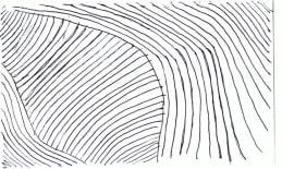 cards/contours-inside