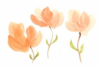 Maybe Magnolias