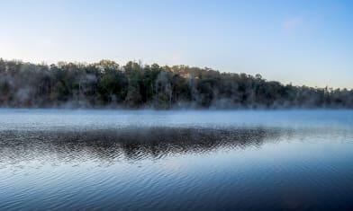 Lake Issaqueena morning fog 3