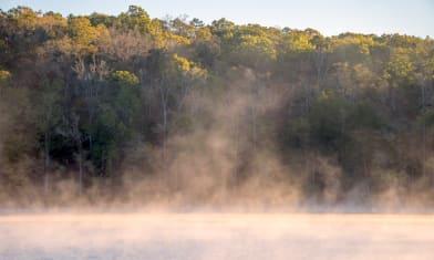 Lake Issaqueena morning fog 2