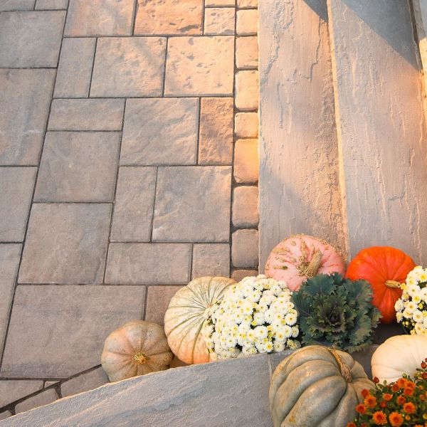 Natural stone patio steps and pavers with assorted pumpkins