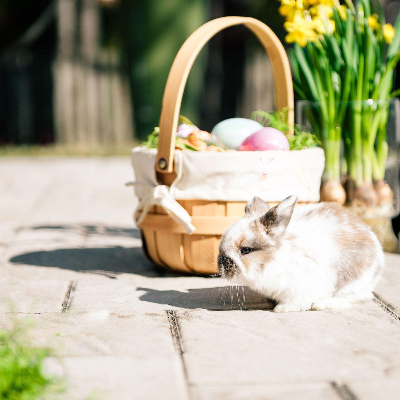 Easter Brunch in Tuckahoe