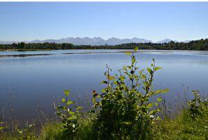 Worchester Lagoon