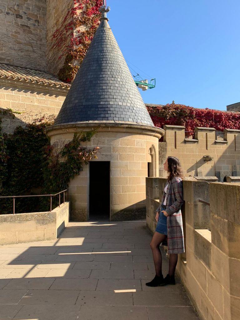 Erasmus ve Španělsku, hradby