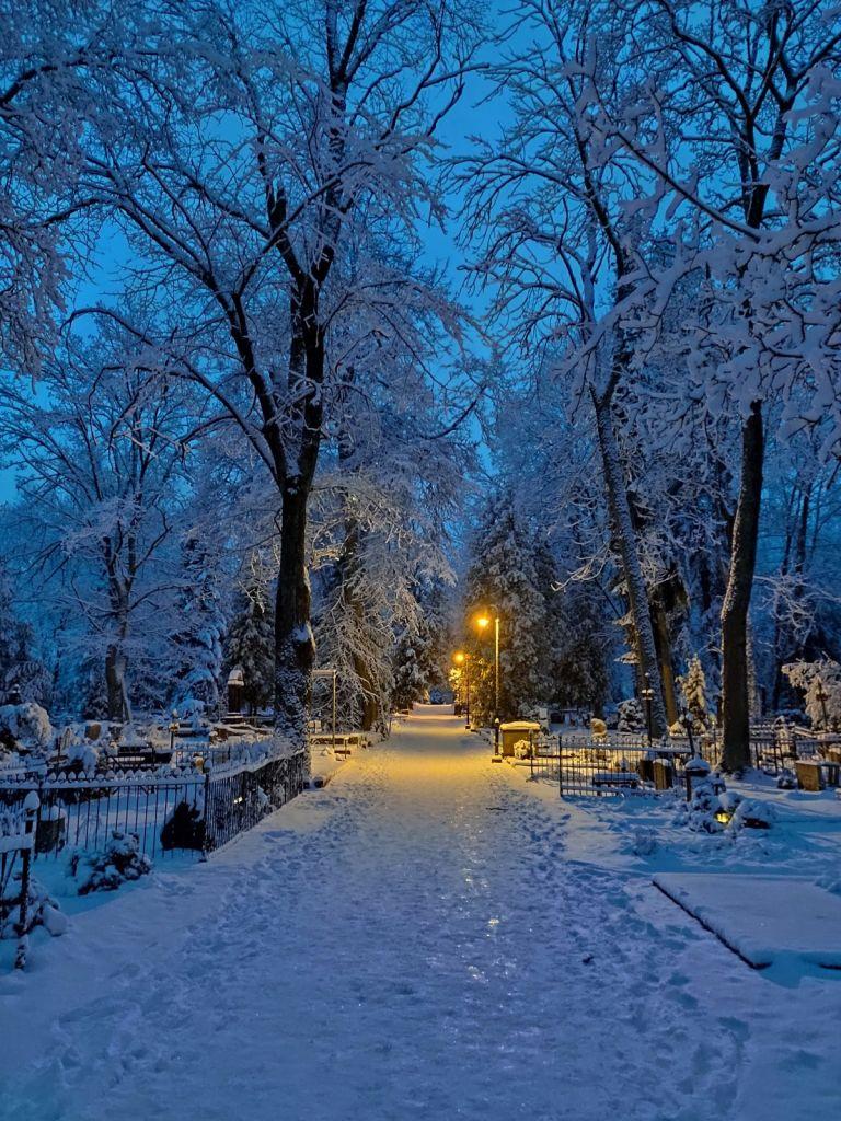 Estonsko v zimě
