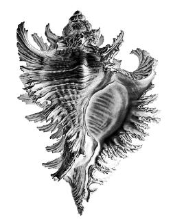 tjuvholmen-sjmagasin-symbol-sj
