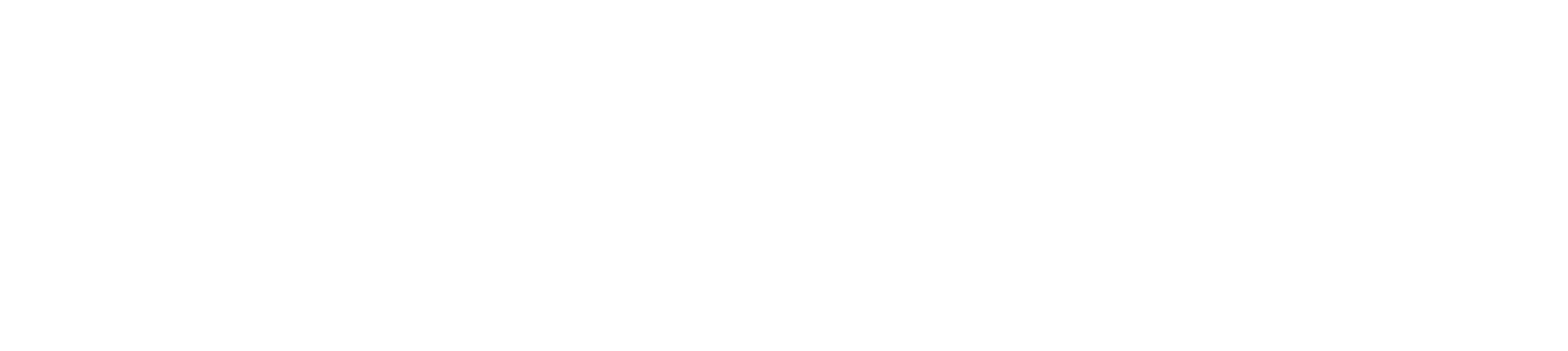 secondary-wide-white-outline