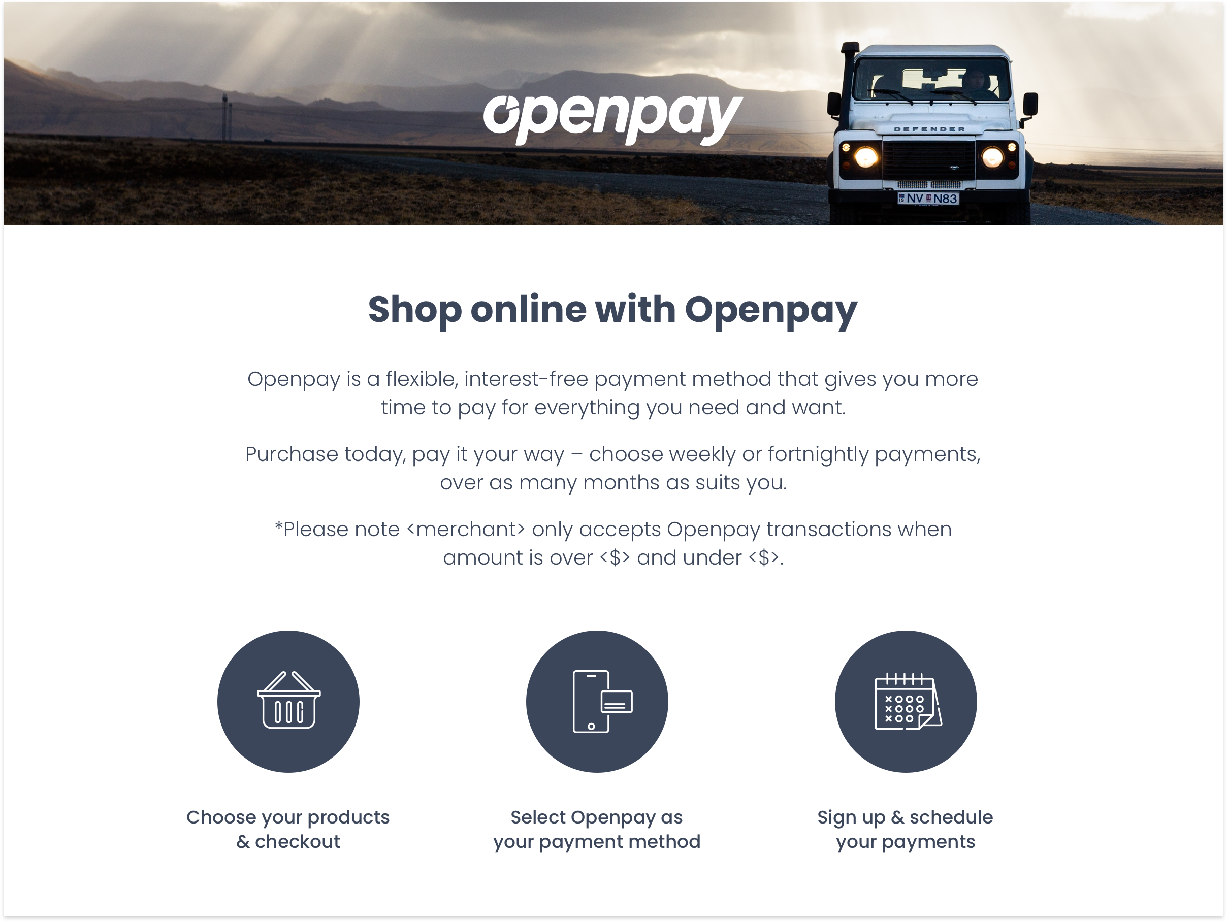 Openpay — Brand Identity, guideline and assets