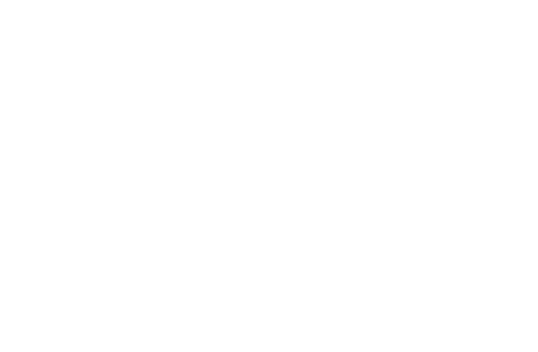 type-neuehaas-01