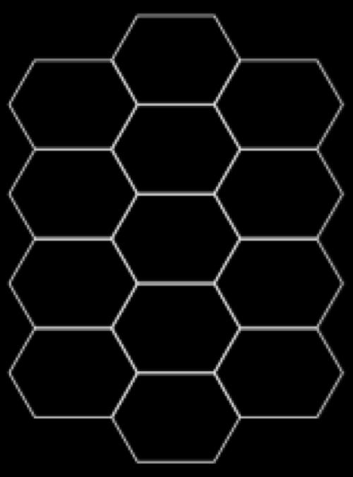 skeleton_tortoisegrid