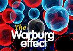 The Warburg Effect