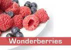 Wonderberries