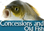 Concessions and Old Fish