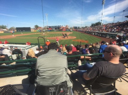 <h5>Scottsdale Stadium</h5><p>Accessible seating behind home plate. </p>
