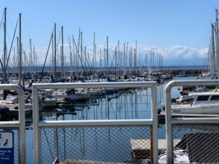 <h5>Shilshole Bay Marina</h5><p> Shilshole Bay Marina - Overall</p>