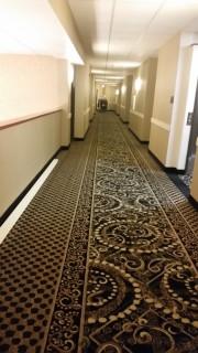 <h5>Comfort Suites Southwest</h5><p> Comfort Suites Southwest - Wide Hallways</p>