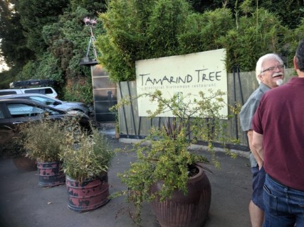 <h5>Tamarind Tree</h5><p> Tamarind Tree - Overall</p>