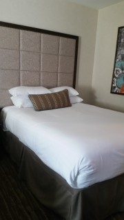<h5>Gaylord Texan Resort & Convention Center</h5><p>Queen sized bed</p>