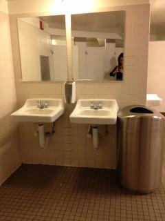 <h5>Bathroom Sinks</h5>