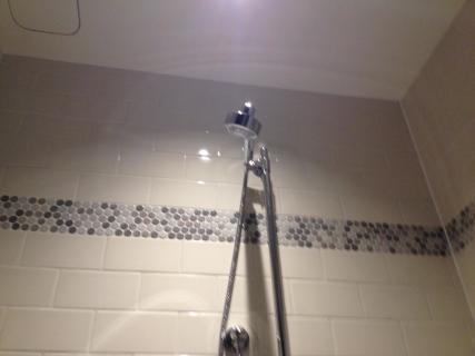 <h5>Shower head</h5>
