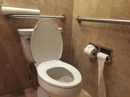 <h5>Accessible restroom in Room 620</h5>