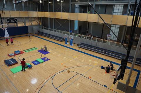 <h5>Basketball Court</h5>