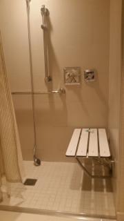 <h5>Roll in shower</h5>