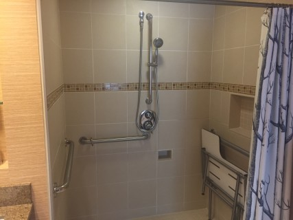 <h5>Roll-in shower</h5>