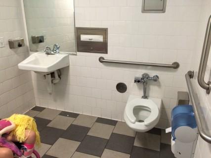 <h5>Restroom 5</h5>