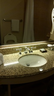 <h5>Gaylord Texan Resort & Convention Center</h5><p>Wheelchair friendly accessible sink with easy to use fixtures.</p>