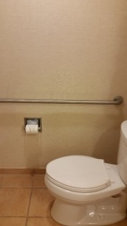 <h5>Gaylord Texan Resort & Convention Center</h5><p>Toilet with grab bar</p>
