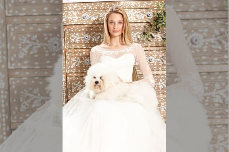 Phillipa Lepley dress on model in front of cabinet with dog