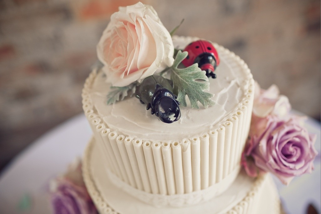 Bridebook.co.uk- lady bird and beetle cake topper