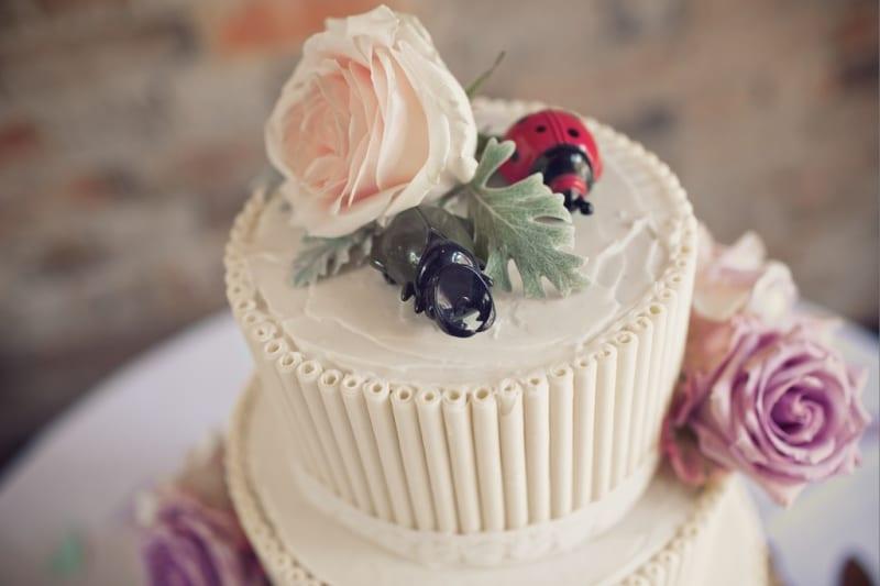 Bridebook.co.uk- lady bird and beetle cake topper