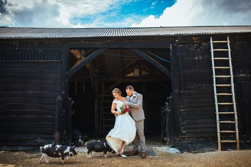 bridebook.co.uk couple and the pigs