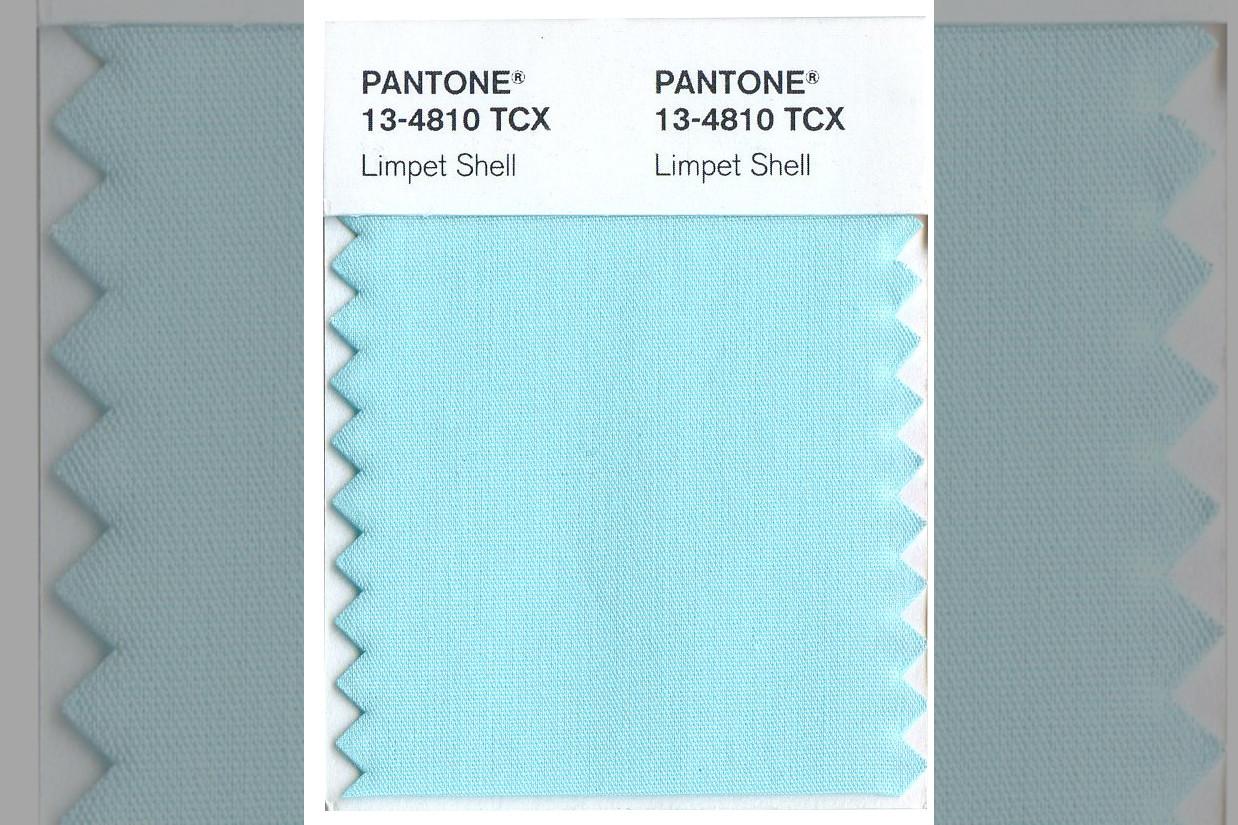 bridebook.co.uk-pantone-limpet-shell