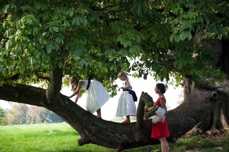 Bridebook.co.uk- kids climbing a tree while a guest looks on